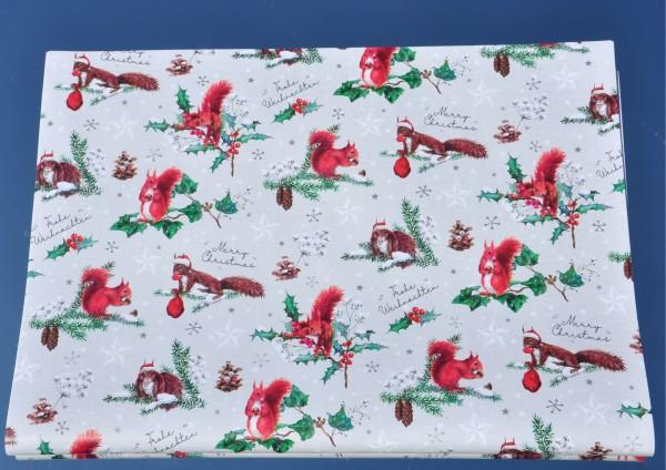 Eichhörnchen - Geschenkpapier