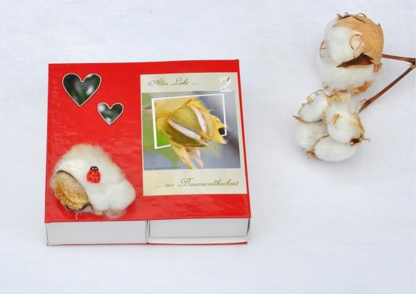2. Hochzeitstag Baumwollhochzeit - ROT für Zwei