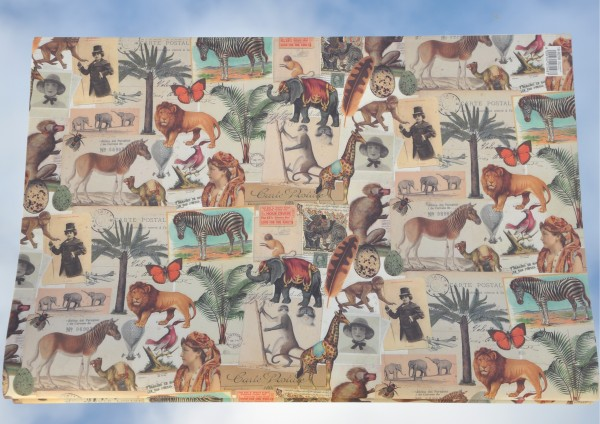 Afrika - Geschenkpapier
