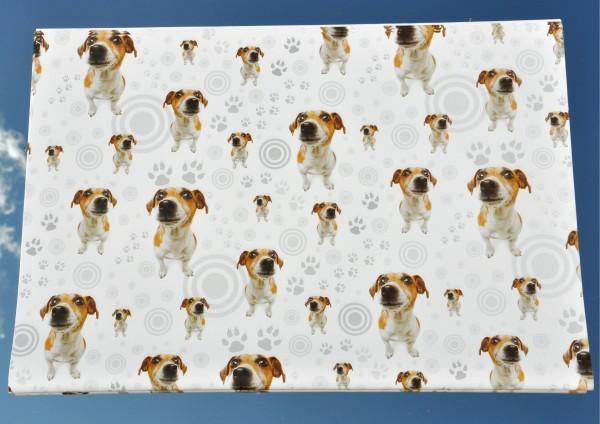 Hunde / Dackel - Geschenkpapier