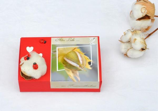 2. Hochzeitstag Baumwollhochzeit - rote Geschenkschachtel