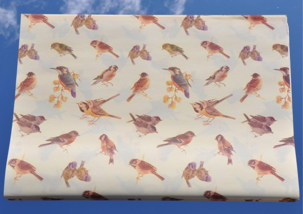 Vögel im Garten - Geschenkpapier