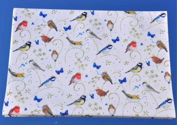Vögel - Geschenkpapier